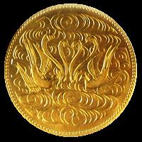 天皇陛下御在位60年記念硬貨100000円金貨